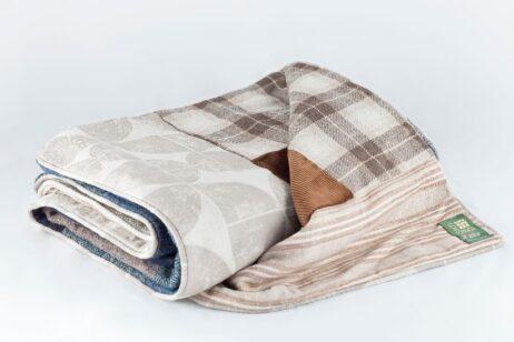 Cut out of Gentleman Explorer Quilt - back of quilt.